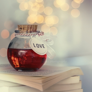 love_bottle_by_lieveheersbeestje-d4i0asc